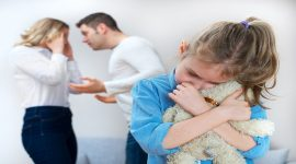What are the characteristics of the addict's family